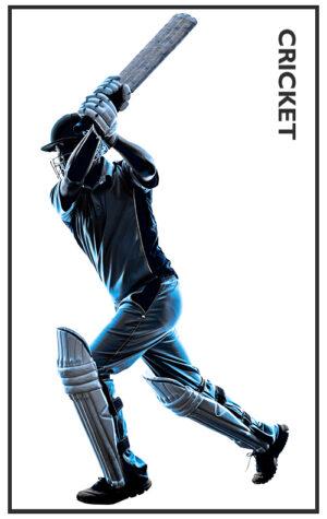 06 Cricket
